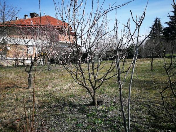 Villetta a schiera in vendita a Isola d'Asti, Repergo, Con giardino, 167 mq - Foto 33
