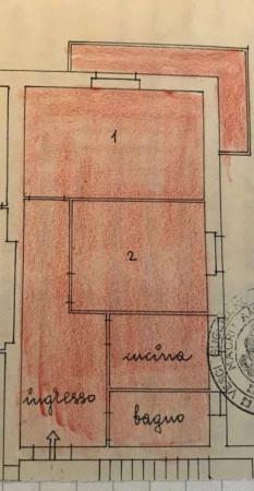 Appartamento in affitto a Roma, Medaglie D'oro, Con giardino, 70 mq