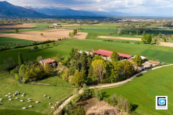 Villa in vendita a Alpignano, Alpignano Nord, Con giardino, 143 mq