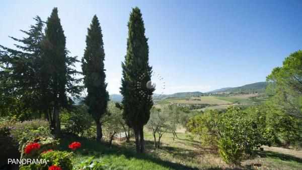 Rustico/Casale in vendita a Pontassieve, Con giardino, 350 mq - Foto 8