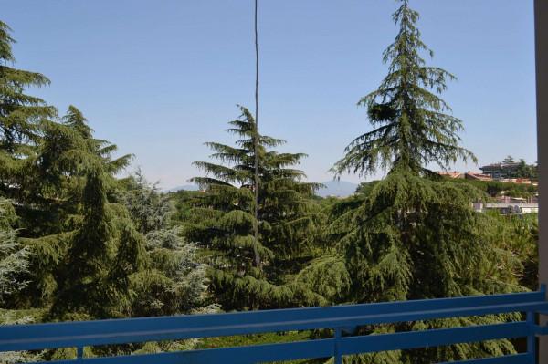 Appartamento in affitto a Roma, Mostacciano, Con giardino, 92 mq - Foto 3