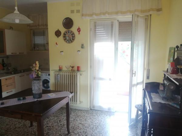 Appartamento in vendita a Quattordio, Pp, 95 mq - Foto 12