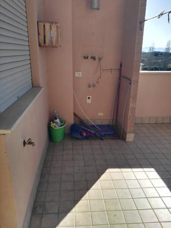 Appartamento in affitto a Latina, Latina Scalo, 70 mq - Foto 2