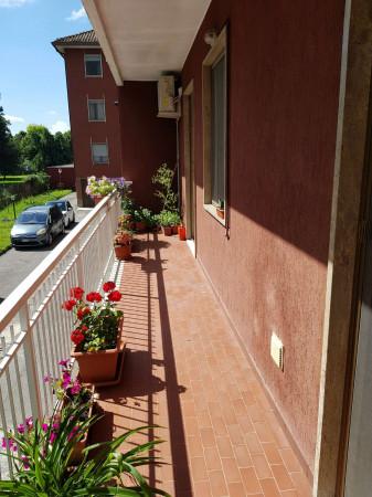 Appartamento in vendita a Spino d'Adda, Residenziale, Con giardino, 117 mq - Foto 28