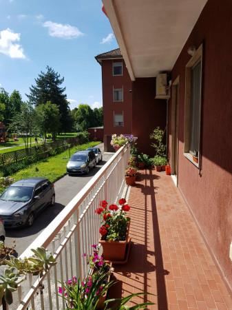 Appartamento in vendita a Spino d'Adda, Residenziale, Con giardino, 117 mq - Foto 5