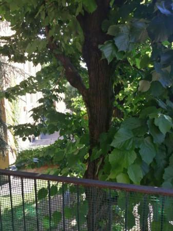 Appartamento in affitto a Milano, San Siro, 65 mq - Foto 5