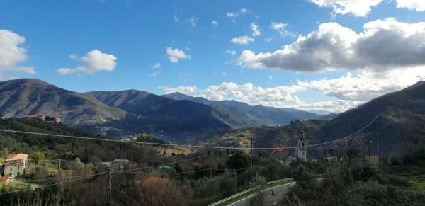 Appartamento in vendita a Tribogna, Residenziale, Con giardino, 55 mq - Foto 6