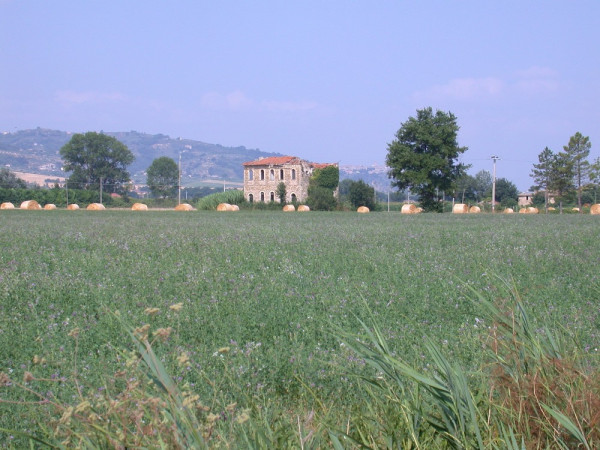 Locale Commerciale  in vendita a Assisi, Castelnuovo, Con giardino, 380 mq - Foto 13