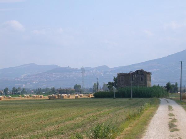 Locale Commerciale  in vendita a Assisi, Castelnuovo, Con giardino, 380 mq - Foto 6