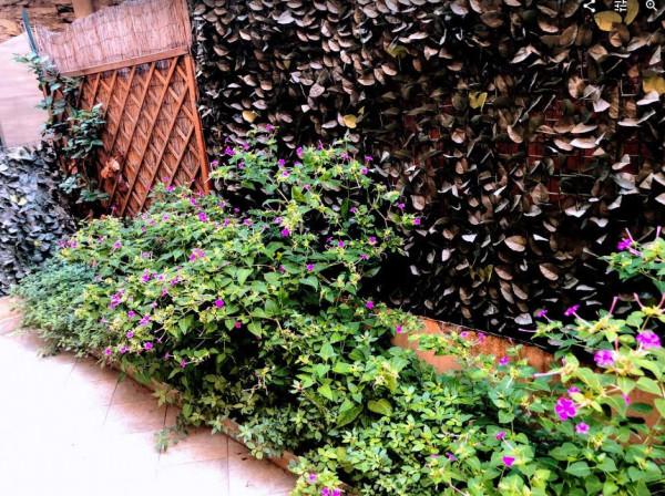 Appartamento in vendita a Genova, Nervi, Arredato, con giardino, 65 mq - Foto 16