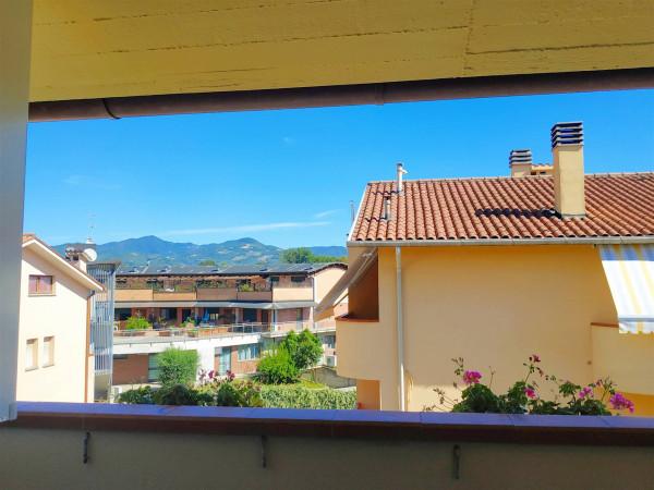 Appartamento in vendita a Città di Castello, Madonna Del Vento, Con giardino, 90 mq - Foto 4