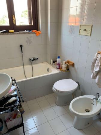Appartamento in affitto a Cesate, Con giardino, 180 mq - Foto 2