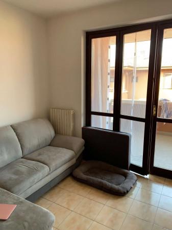 Appartamento in affitto a Cesate, Con giardino, 180 mq - Foto 10