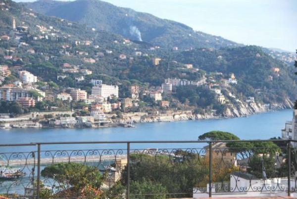 Villa in vendita a Rapallo, Con giardino, 670 mq