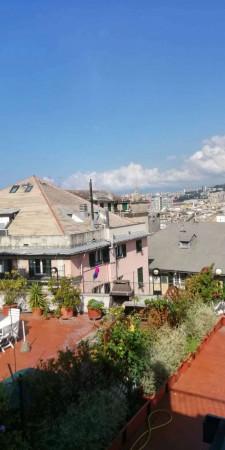 Appartamento in affitto a Genova, Arredato, 60 mq