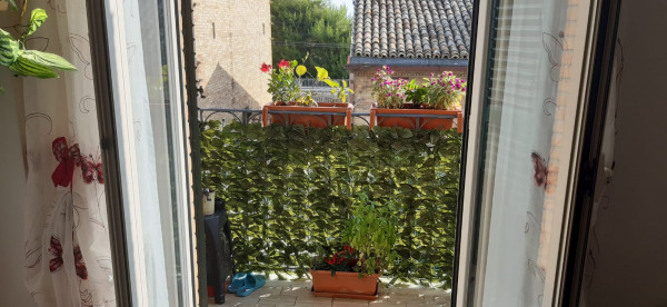 Appartamento in affitto a Porto Sant'Elpidio, Centro, 50 mq - Foto 5