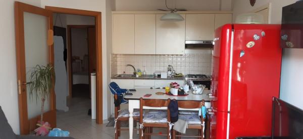 Appartamento in affitto a Porto Sant'Elpidio, Centro, 50 mq