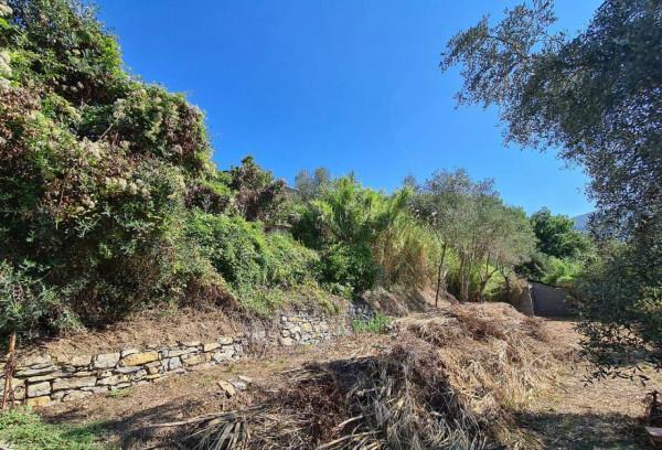 Villa in vendita a Chiavari, Residenziale, Con giardino, 190 mq - Foto 26