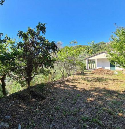 Villa in vendita a Chiavari, Residenziale, Con giardino, 190 mq - Foto 24