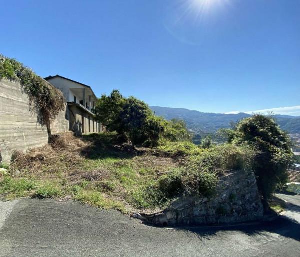 Villa in vendita a Chiavari, Residenziale, Con giardino, 190 mq - Foto 15