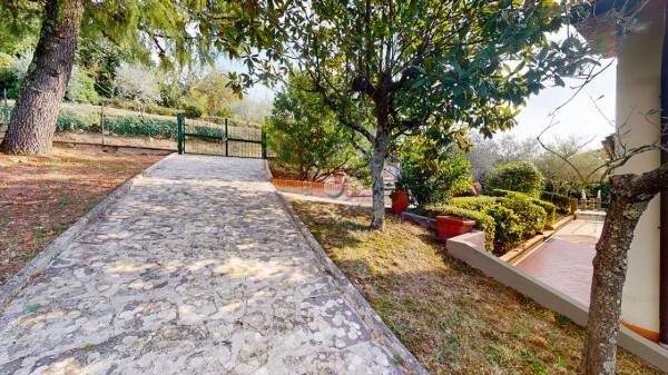 Villa in vendita a Reggello, Con giardino, 206 mq - Foto 20