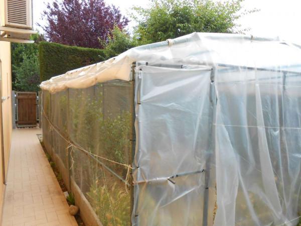 Appartamento in vendita a Sergnano, Residenziale, Con giardino, 119 mq - Foto 5