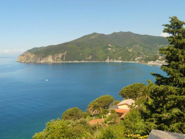 Immobile in vendita a Moneglia, Lemeglio, Con giardino, 1000 mq - Foto 14