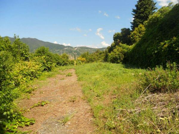 Immobile in vendita a Moneglia, Lemeglio, Con giardino, 1000 mq - Foto 12