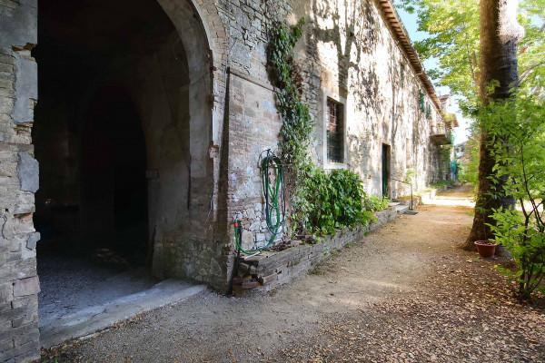 Locale Commerciale  in vendita a Amelia, Centro Storico, Con giardino, 1200 mq - Foto 8
