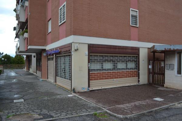 Locale Commerciale  in affitto a Roma, Monti San Paolo Romagnoli, 160 mq