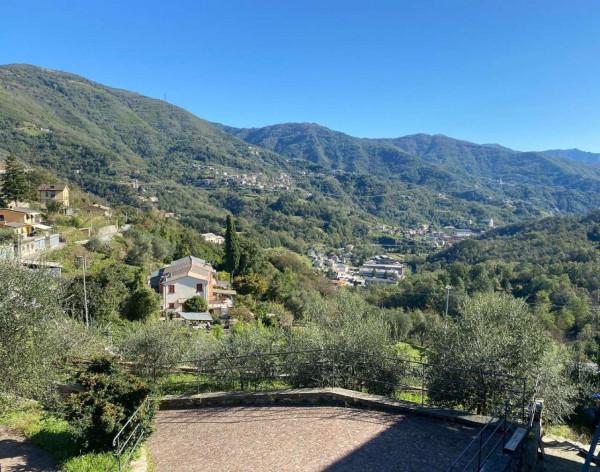 Appartamento in affitto a Tribogna, Cassanesi, Con giardino, 85 mq - Foto 17