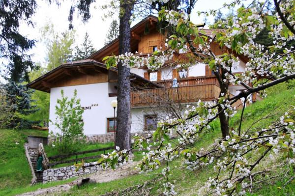 Locale Commerciale  in vendita a Caldaro sulla strada del vino, Passo Mendola, Con giardino, 650 mq - Foto 20