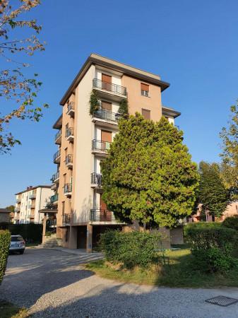Appartamento in vendita a Rivolta d'Adda, Residenziale, Con giardino, 50 mq - Foto 3