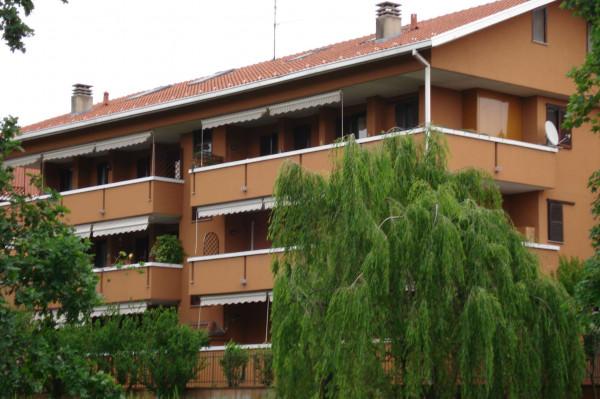 Appartamento in affitto a Cesate, 85 mq - Foto 6