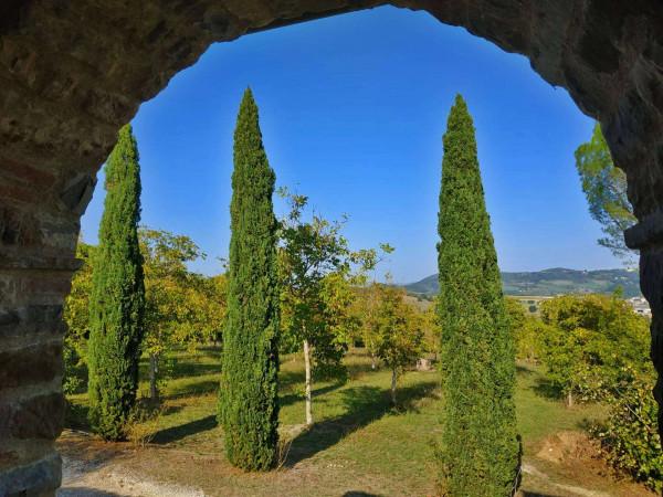 Rustico/Casale in vendita a Città di Castello, Badia Petroia, Con giardino, 280 mq - Foto 27