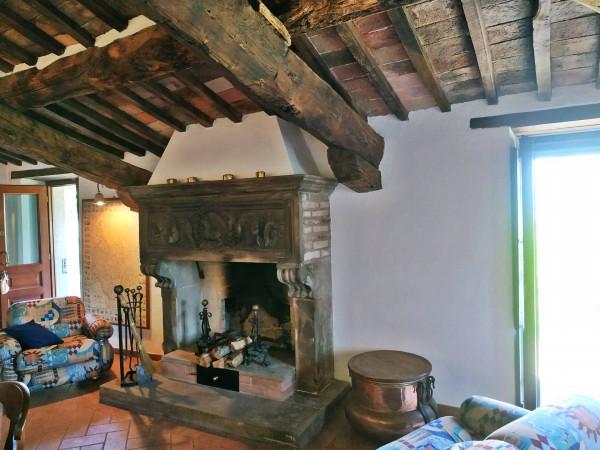 Rustico/Casale in vendita a Città di Castello, Badia Petroia, Con giardino, 280 mq - Foto 20