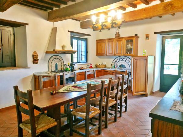 Rustico/Casale in vendita a Città di Castello, Badia Petroia, Con giardino, 280 mq - Foto 23