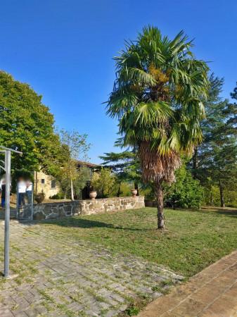 Rustico/Casale in vendita a Città di Castello, Badia Petroia, Con giardino, 280 mq - Foto 7