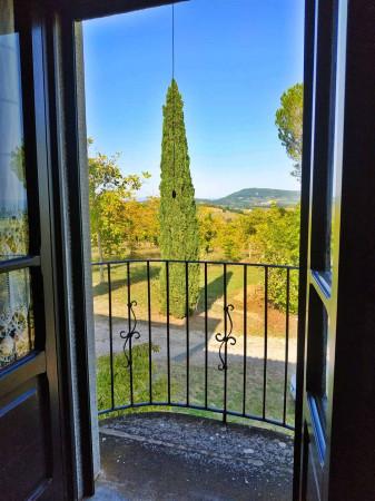 Rustico/Casale in vendita a Città di Castello, Badia Petroia, Con giardino, 280 mq - Foto 24