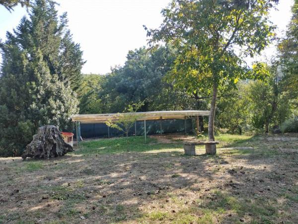 Rustico/Casale in vendita a Città di Castello, Badia Petroia, Con giardino, 280 mq - Foto 28
