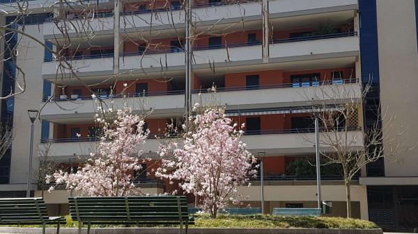Appartamento in affitto a Milano, Ripamonti, Arredato, con giardino, 55 mq - Foto 3