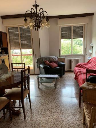 Appartamento in affitto a Limbiate, Mombello, Arredato, 65 mq - Foto 13