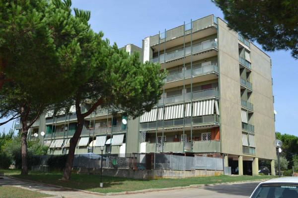 Appartamento in vendita a Roma, Acilia, Con giardino, 100 mq - Foto 4
