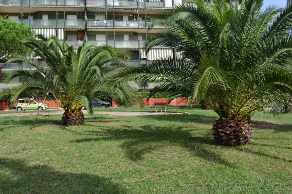 Appartamento in vendita a Roma, Acilia, Con giardino, 70 mq - Foto 5