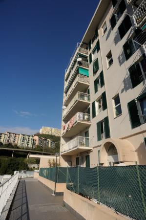 Appartamento in affitto a Genova, Prà, 60 mq