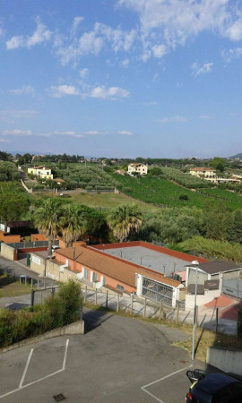 Appartamento in affitto a Roma, Morena, Arredato, con giardino, 60 mq - Foto 1
