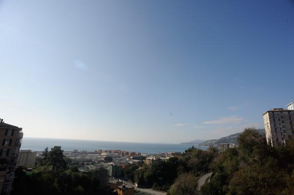 Appartamento in affitto a Genova, Pra, 55 mq