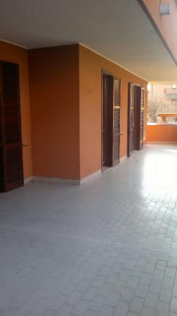 Appartamento in affitto a Cesate, 115 mq - Foto 21