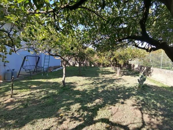 Casa indipendente in vendita a Ascea, Velia, Con giardino, 100 mq - Foto 5