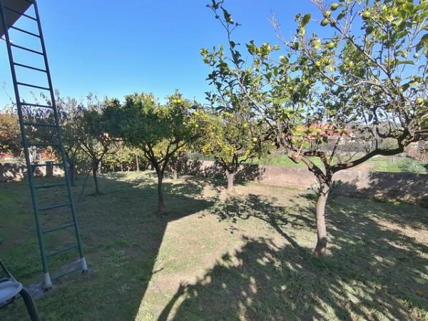 Casa indipendente in vendita a Ascea, Velia, Con giardino, 100 mq